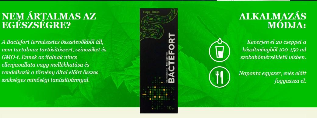 Mennyibe kerül a féreggyógyszer. Bactefort Review féreg gyógyszerek ember számára