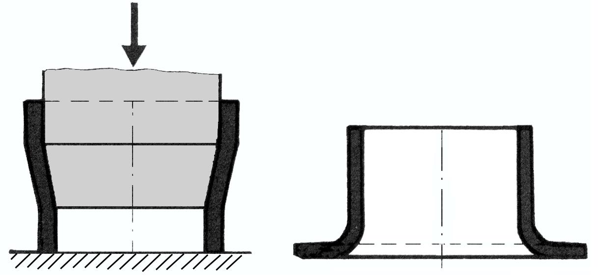 A parazitológia a helmintusok vizsgálata