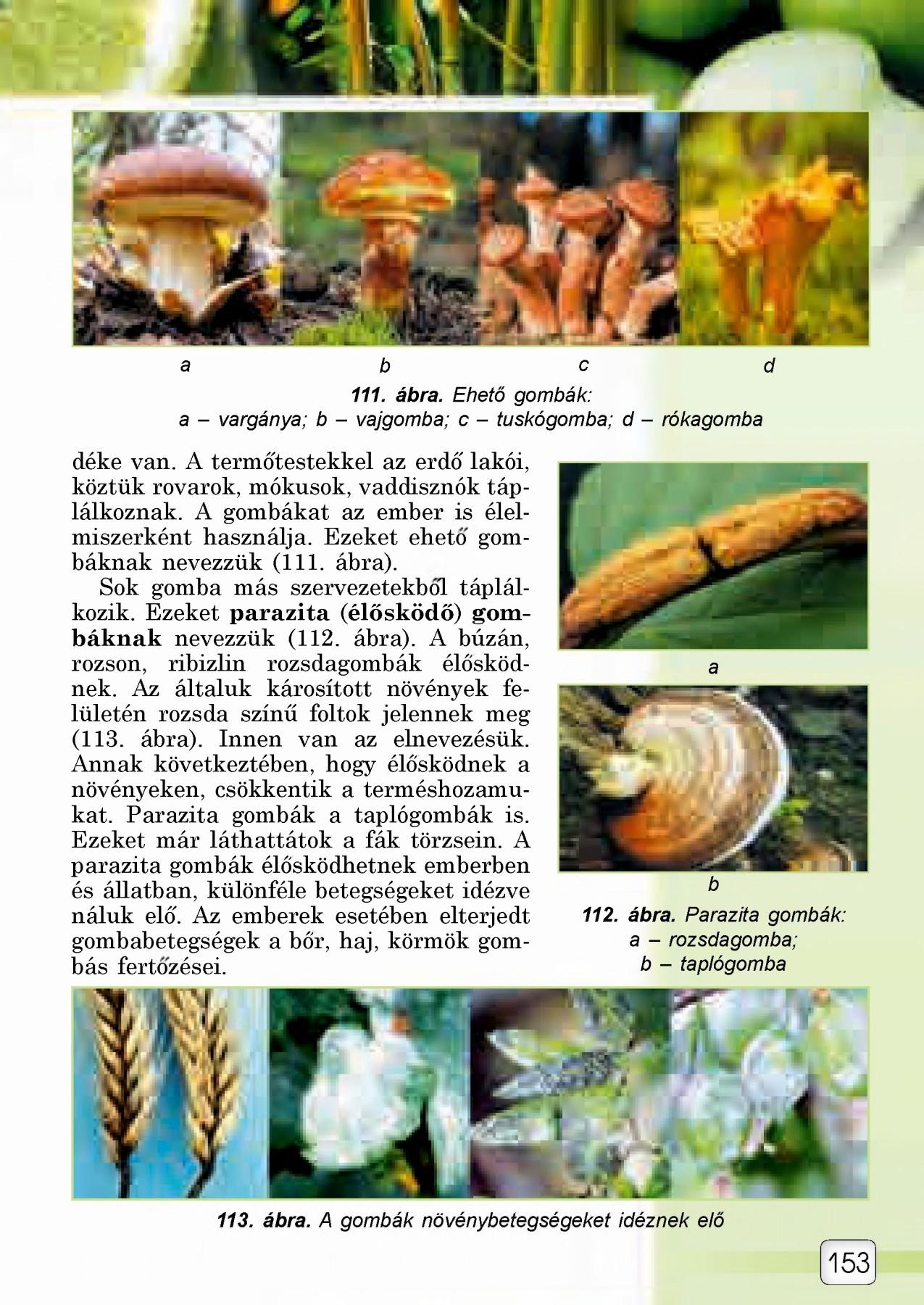 Paraziták a természetben