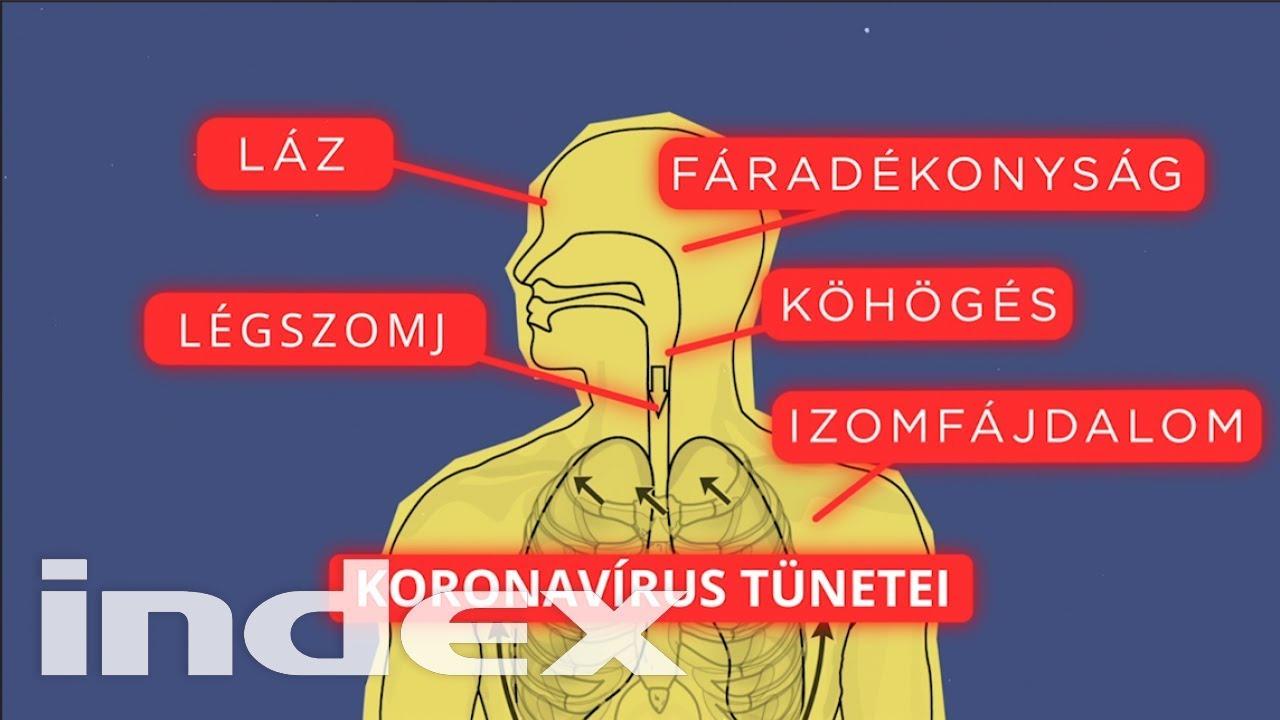 paraziták az emberi ajkakon