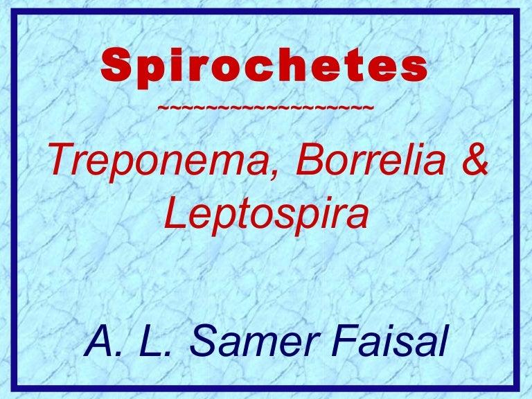 helminták típusai és tünetei paraziták ekcéma esetén