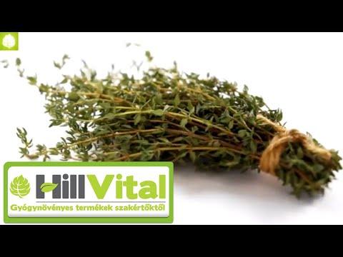 parazitaellenes gyógynövények és fűszerek)