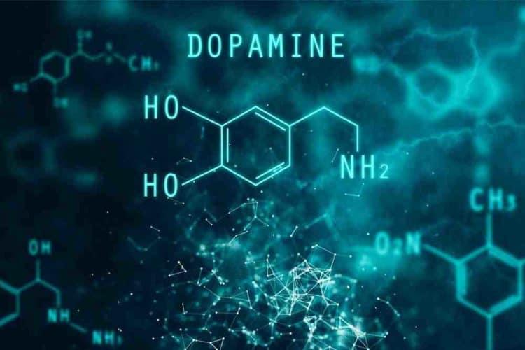dopamin, hogyan lehet növelni a gyógyszerek szintjét a szervezetben)