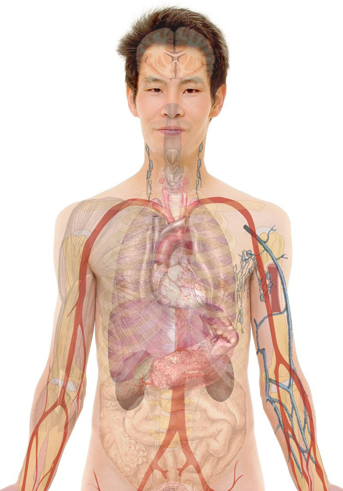 Opisthorchiasis diphyllobothriasis - Hogyan fertőzhetek meg?