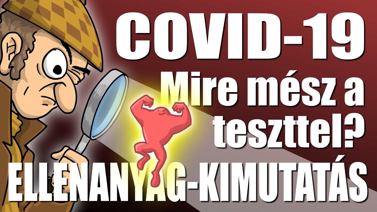 ascarisszal fertőzött személy)