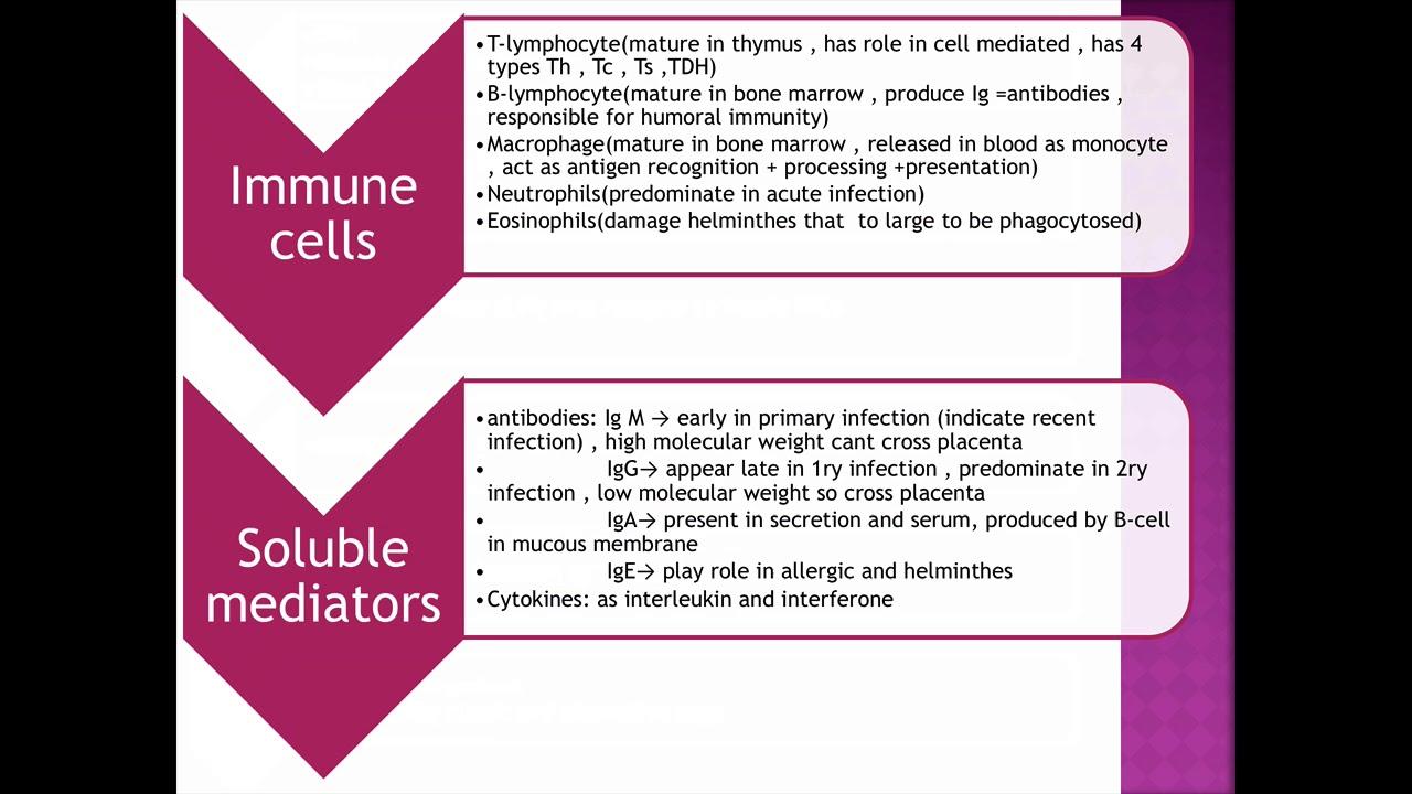 Széles és galandféreg-tünetek az embereknél