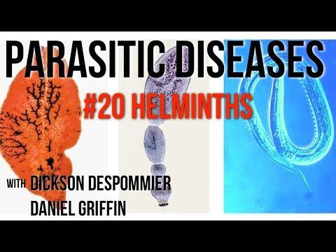 a helminthiasis fertőző)