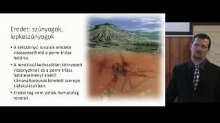 átfogó parazitakutatás)