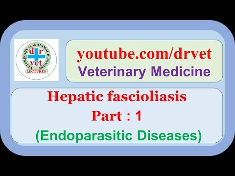fascioliasis klinikai irányelvek