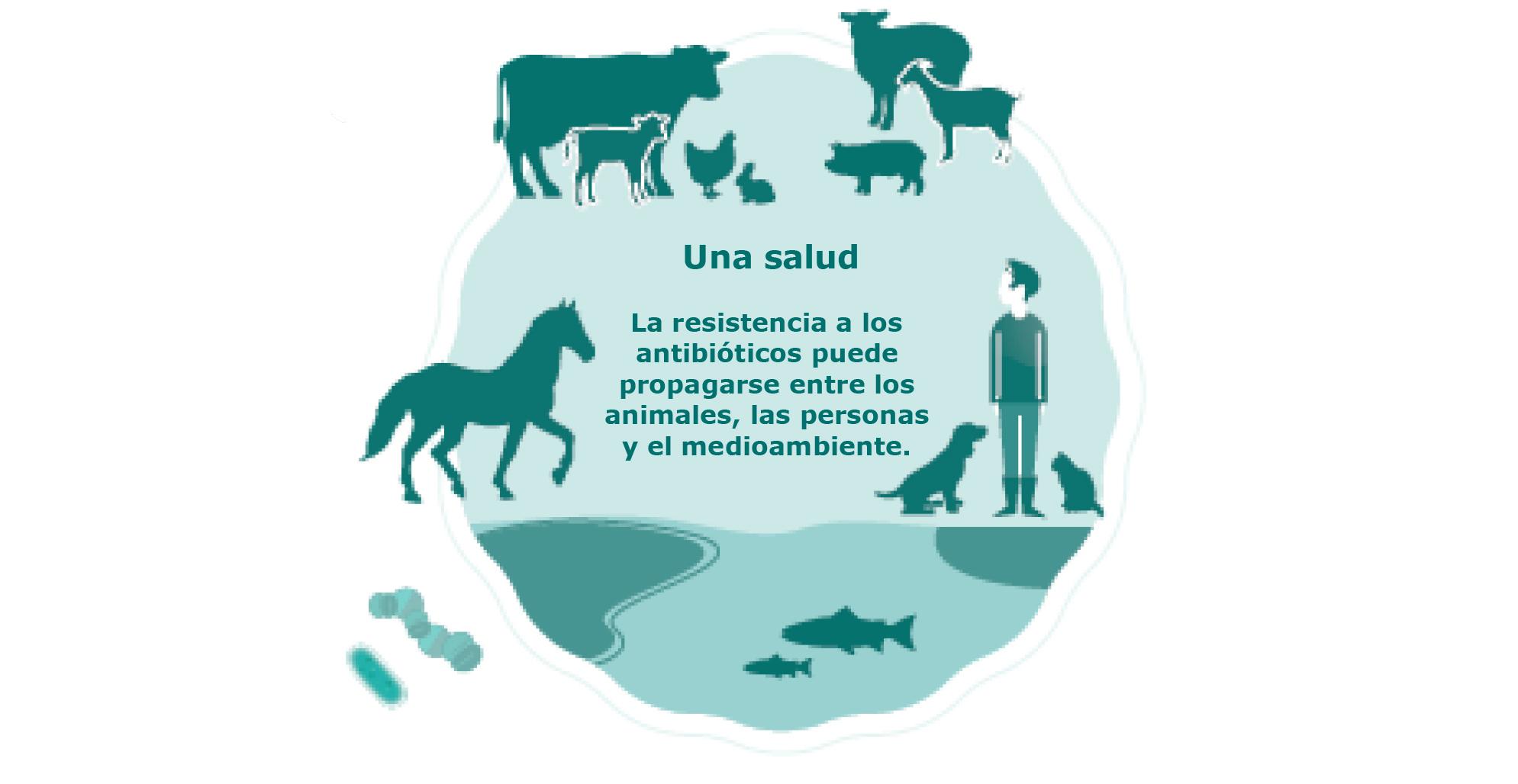 adja meg a biotikus parazitákat ellenőrizze testét paraziták ellen