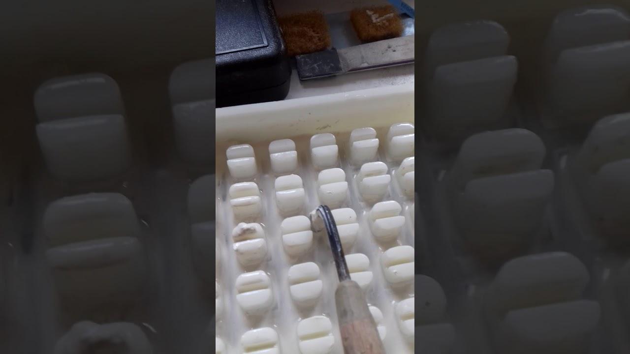 parazita tesztek