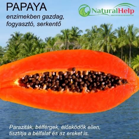 papaya mag parazita orvosság)