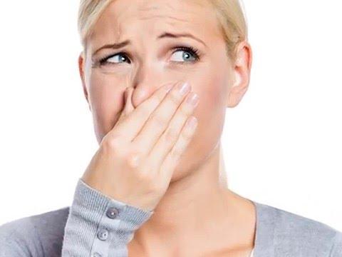 szagtól különböző szagok parazita a nyelőcsőben