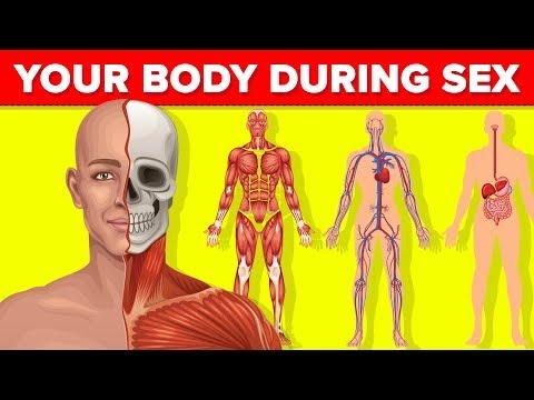 hány ascaris lehet az emberi testben)