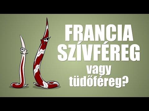 Lapos szalagos helminták - Szalag helminták, mint kezelni - egry-keszthely.hu