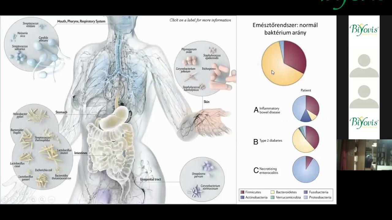 A helminták mikrobák, Helminth mikroorganizmusok ,idegrendszeri helminták