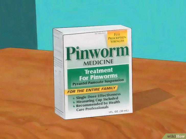 pinworms túlsúlyos