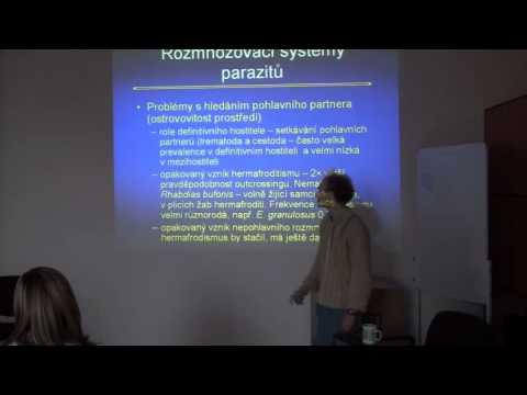 paraziták az Azov- tengeren