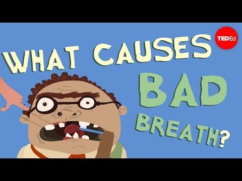 hogyan határozhatja meg maga a szájszagot gyomorfájás és az aceton szaga a szájból