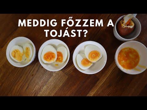 ostorféreg- tojás leírása)