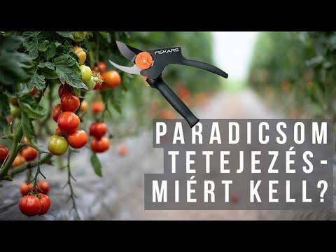 paradicsom paraziták ellen)